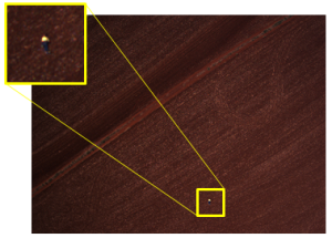 The image scanning algorithm has correctly detected the lost hiker from a photo taken during the 2012 Search and Rescue Challenge