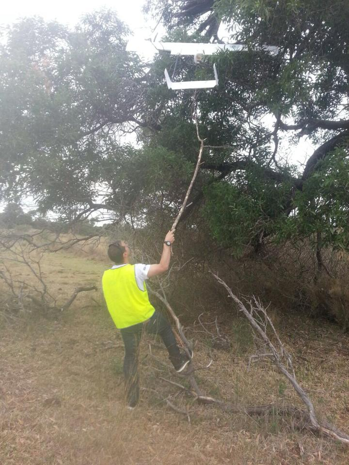 Geoff recovering our UAV from a tree